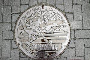 2014 World Broomball Championships